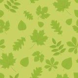 Foliage Stock Images