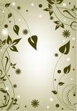 Foliage Royalty Free Stock Images