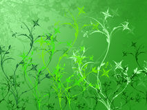 Foliage abstract illustration Royalty Free Stock Image