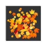 Foliage autumn backdrop Stock Photo