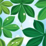 Foliage background. Foliage fresh in the morning illustration stock illustration