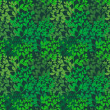 Foliage background Royalty Free Stock Photo