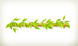Foliage banner Royalty Free Stock Photo