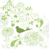 Foliage with bird. Foliage and flowers with bird and vine Stock Photos