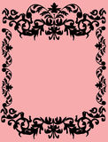 Foliage black frame on pink Royalty Free Stock Images