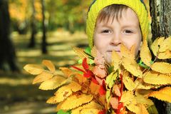 Foliage and boy Royalty Free Stock Photo