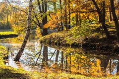 Foliage on clear water is one of the signs of` Indian summer ` in Russia. royalty free stock images