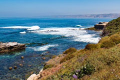 Foliage on Cliff Overlooking Rock Formations in La Jolla, California. Foliage on the side of a cliff overlooking natural rock formations and crashing ocean waves Stock Photos