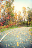 Foliage - Fall Rural Road With Autumn Leaves Royalty Free Stock Photos