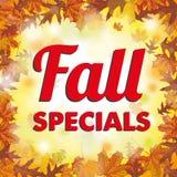 Foliage Fall Specials. Fall specials, foliage with bokeh lights Royalty Free Stock Photo