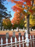 Foliage in Graveyard. Fall Foliage is a Brilliant contrast in a Graveyard Setting stock photos