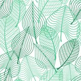 Foliage green leaves seamless pattern Stock Image