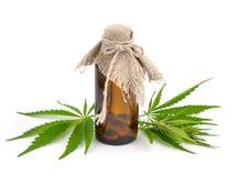 Foliage of hemp with pharmaceutical bottle. Isolated Stock Photography