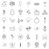 Foliage icons set, outline style. Foliage icons set. Outline style of 36 foliage vector icons for web isolated on white background Royalty Free Stock Images