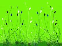 Foliage illustration. Shining green plant foliage illustration Royalty Free Stock Photos