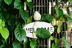 Foliage leaf and wire cage with welcome text banner Stock Image