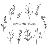 Foliage and leaves set template vector stock illustration
