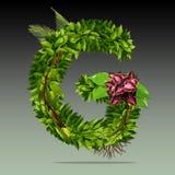 Foliage Logo. Green/G logo from foliage, 3000x3000 pixel with 300 dpi Stock Image