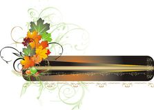 Foliage of maple. Autumn decor for card. Vector illustration Royalty Free Stock Photography