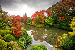 Foliage in Nikko Stock Image