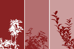 Foliage panels. Silhouettes of various plants on panel background Royalty Free Illustration