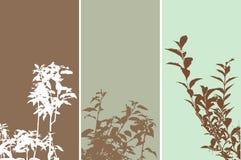 Foliage panels Royalty Free Stock Photography