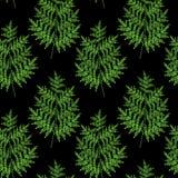 Foliage patern Stock Images