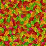 Foliage pattern. Seamless pattern with autumn leaves Stock Images
