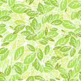 Foliage pattern background Royalty Free Stock Image