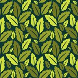 Foliage pattern Royalty Free Stock Image