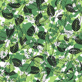 Foliage pattern. Vector background. Royalty Free Stock Image