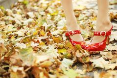 Foliage and red shoes. Woman's legs in a red patent-leather shoes in foliage Royalty Free Stock Images