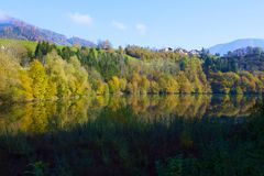 Foliage scenic on water. Foliage scenic on calm river Stock Images