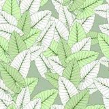 Foliage seamless ornament vector illustration
