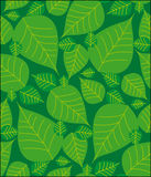 Foliage seamless pattern Royalty Free Stock Images