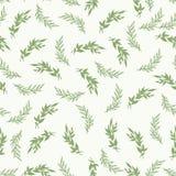 Foliage seamless pattern Royalty Free Stock Photos