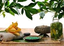 Foliage spa Royalty Free Stock Photography