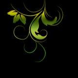 Foliage swirl vector Stock Photography