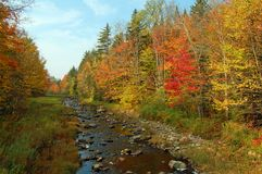 Foliage trees stream. Trees along a stream changing color during fall foliage season in Vermont Stock Images