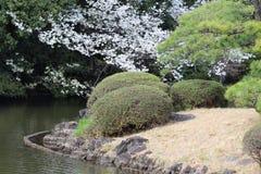 Foliage types in spring at Shinjuku Gyoen National Garden Tokyo Stock Photography