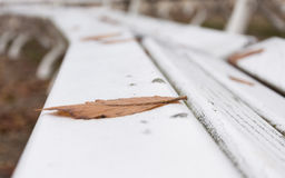 Foliage on a wooden bench. In autumn royalty free stock photography