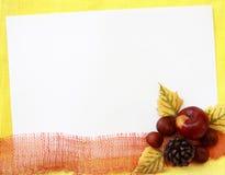 Foliagel autumn background. Foliage autumn background - birchen leaves, apple, strobile, chestnut Royalty Free Stock Photos