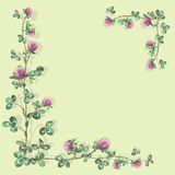 Foliate border. With clover Royalty Free Stock Image
