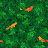 Foliate pattern with birds. Stock Photo