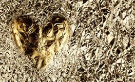 foliowy serce Fotografia Royalty Free