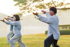 Folkövning Tai Chi Chuan i en parkera Fotografering för Bildbyråer