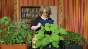 Folk, arbeta i trädgården, blommor och yrkebegrepp - som är nära upp av kvinna eller trädgårdsmästare med minnestavlaPCdatoren arkivfilmer
