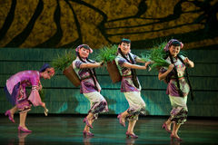 Folk Dance: planting rice. In May 7, 2010, a reflection of Jiangxi original ecological humanities landscape of large style song and dance the wind in Jiangxi Art Stock Photography