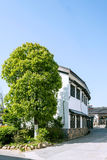 Folk house and green tree royalty free stock images