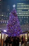 Folk i Bryant Park med julgranen i bakgrund Royaltyfri Bild